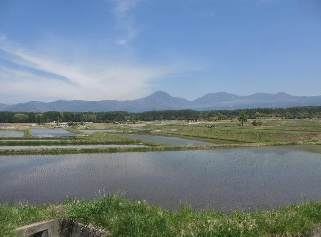 20130518田植えの風景 (20)