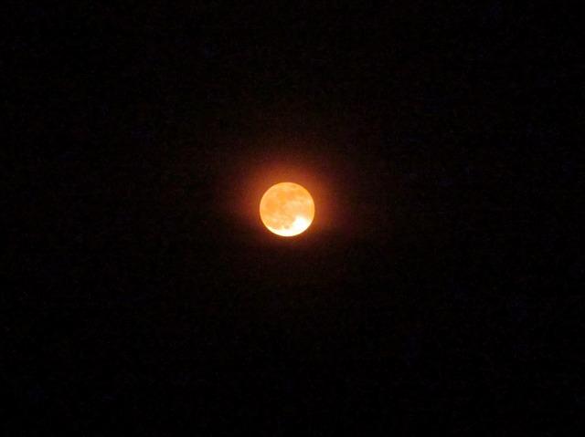 20130525赤い月 (6)