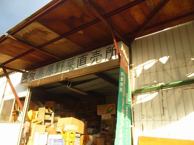 201306010宮坂農園のトマト (3)