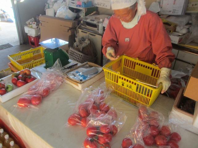 201306010宮坂農園のトマト (8)