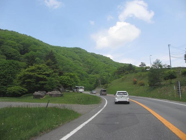 20130607大門藤 (6)