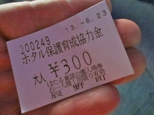 20130623辰野ほたるまつり (21)