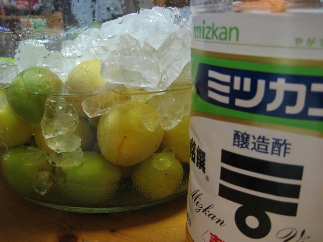 20130703梅酢 (5)