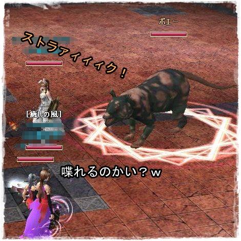 TODOSS_20120929_235104-7-9.jpg