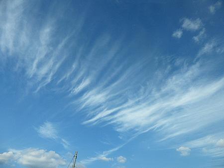 今日の秋雲