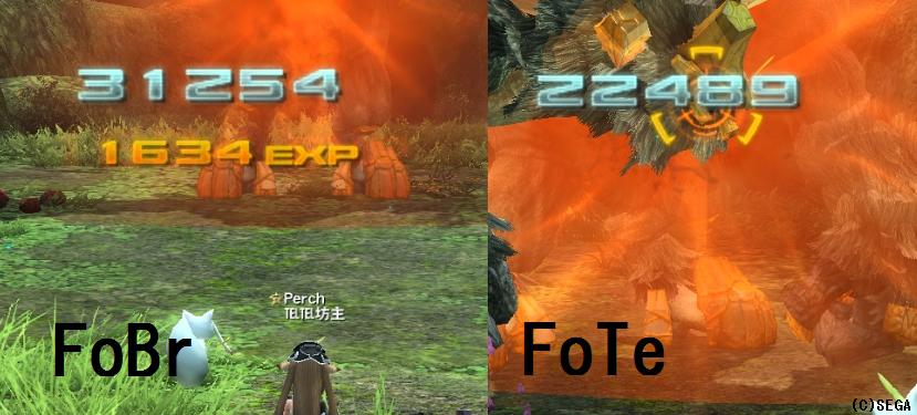 FoBrとFoTe