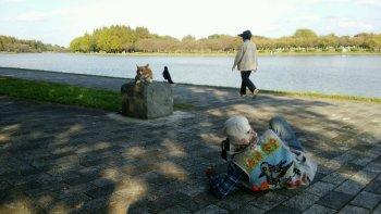 141025水元公園1