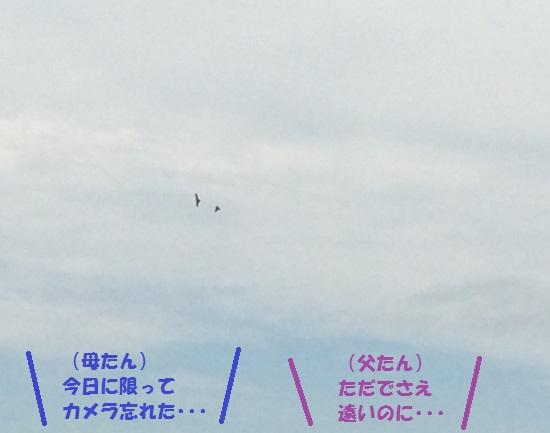 2014年9月25日①