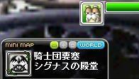 Maple120930_152305.jpg
