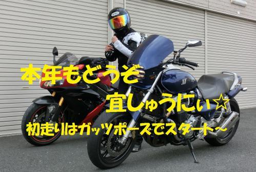 CIMG0519.jpg