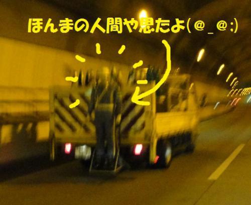 DSC03917_20120907101838.jpg