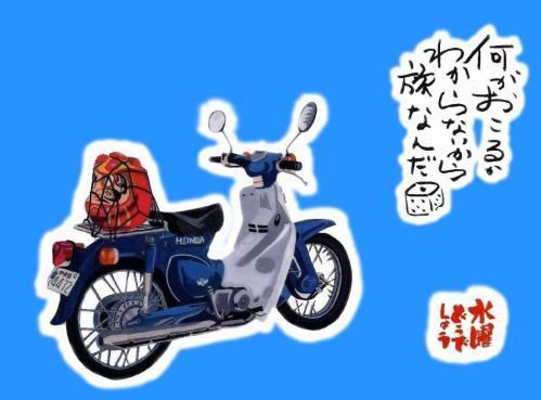 dodesyou_kabu.jpg