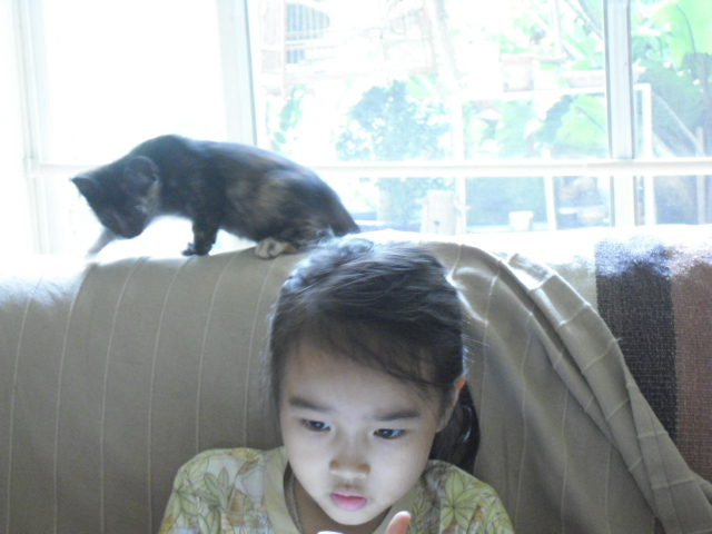 kitten&ran2