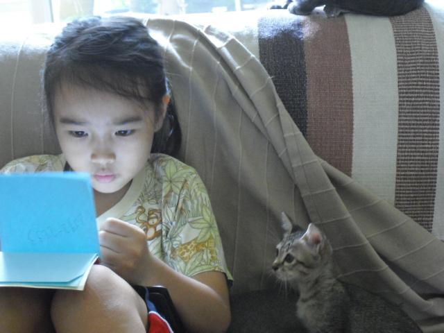 kitten&ran3