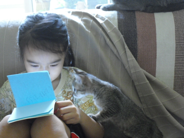 kitten&ran4