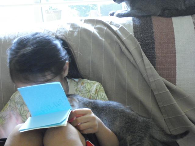 kitten&ran5