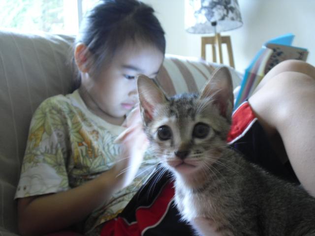 kitten&ran7