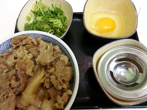 牛ねぎ玉丼 (2)