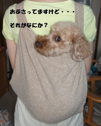 2012_0819~2012夏0027