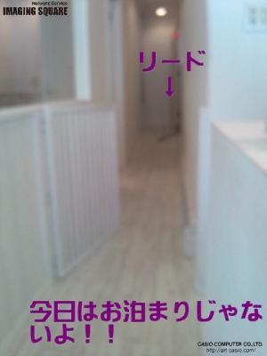 is_6231b5081ec5_convert_20120604092706.jpg