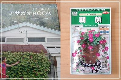 20120510asagao.jpg