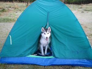 初キャンプ②