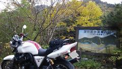 吊り橋~道志・04