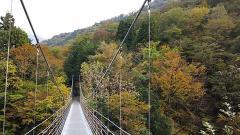 吊り橋~道志・05