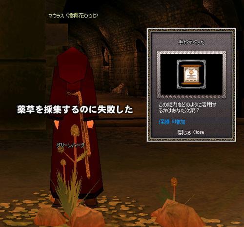 mabinogi_2012_07_02_007.jpg