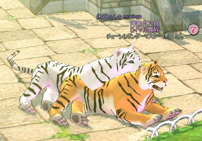 mabinogi_2012_10_29_016.jpg