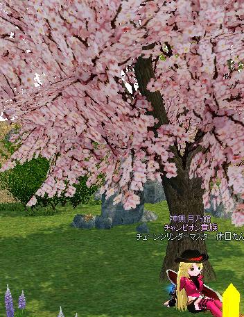 mabinogi_2012_11_08_004.jpg