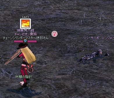 mabinogi_2012_11_08_005.jpg