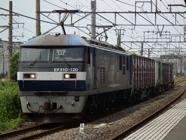 DSCF9434.jpg