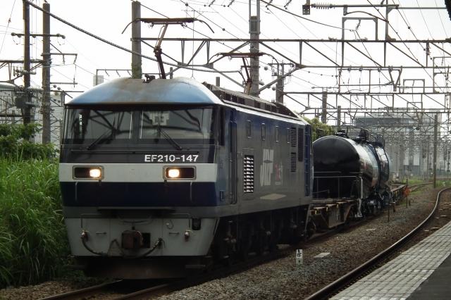 DSCF9702_.jpg
