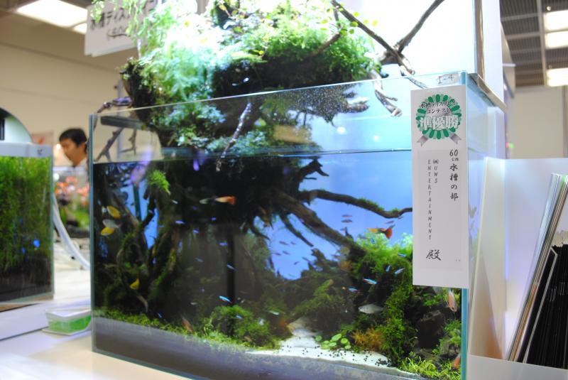 2012日本鑑賞魚フェアアクアテラリウム3