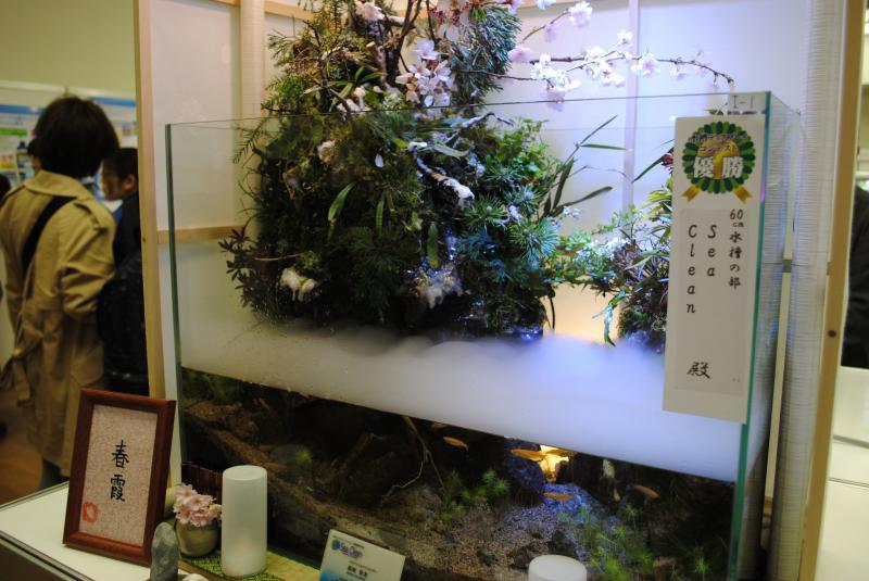 2012日本鑑賞魚フェアアクアテラリウム4