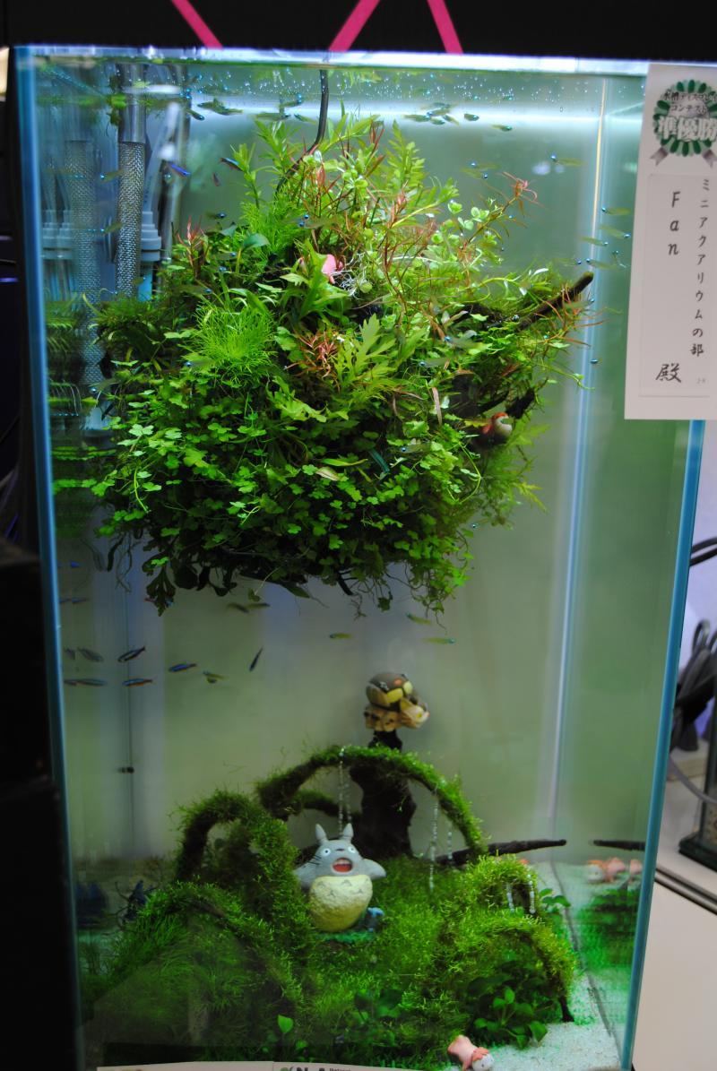 2012日本鑑賞魚フェア・アクア9