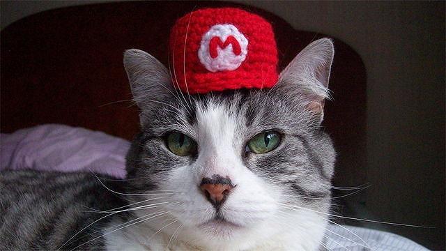 猫用任天堂帽子