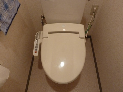20120505_013638_Panasonic_DMC-TZ7.jpg