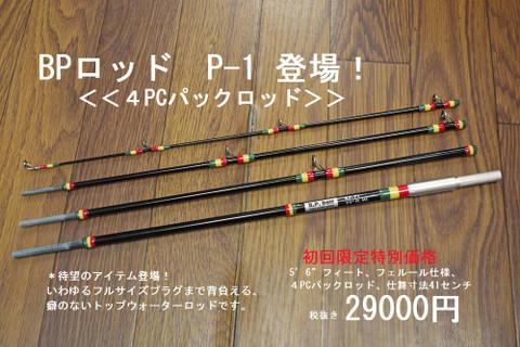 2014906hitori1.jpg