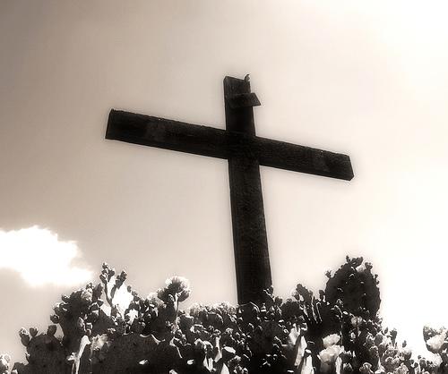 世界:宗教が文明の基礎 日本:宗教は全部カルト なぜなのか?