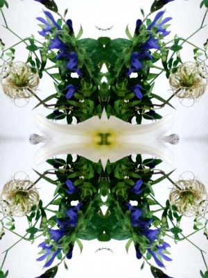 20120706hana6.jpg