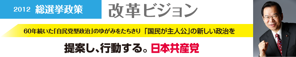 日本共産党改革ビジョン 写真
