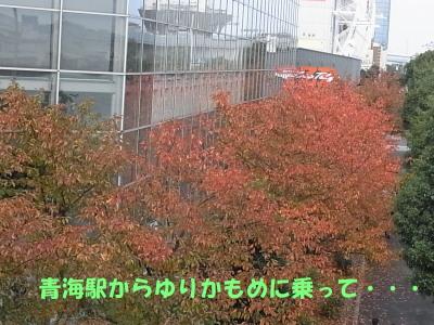 141204-19.jpg