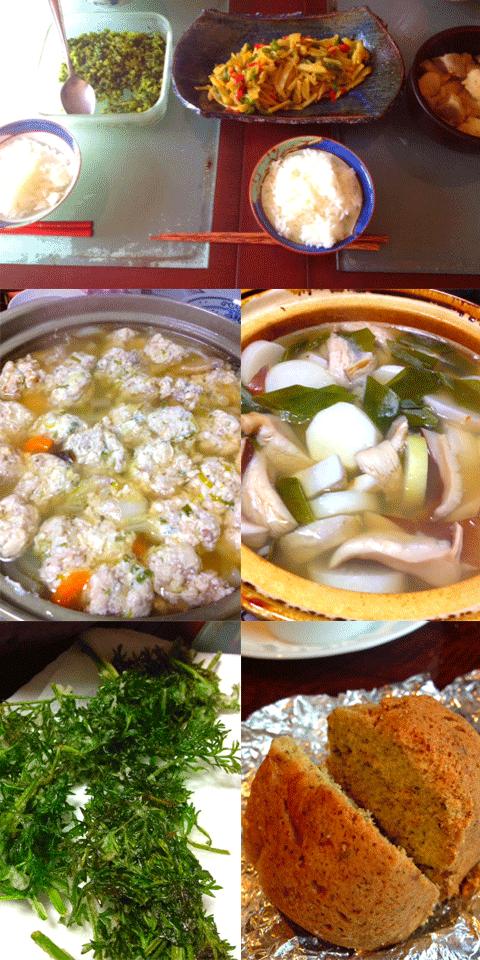 日南料理2
