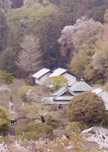 円覚寺/見晴茶屋-1_R