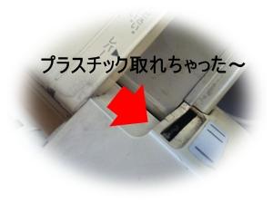 IMG_1171.jpg