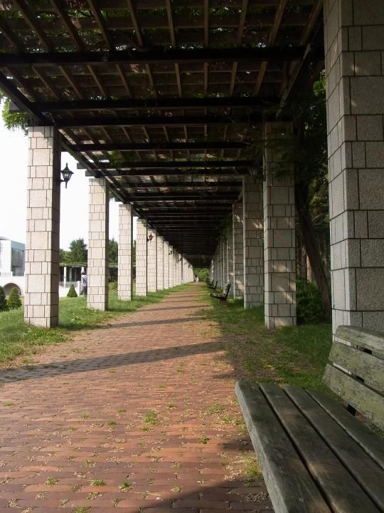 前田森林公園29