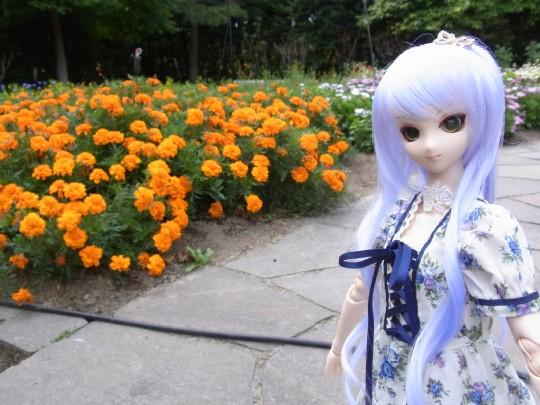 神奈 世界の庭園02