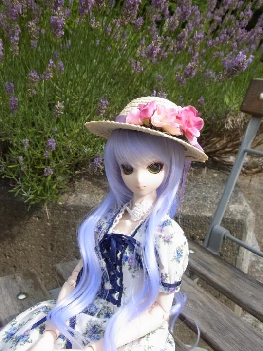 神奈 世界の庭園13